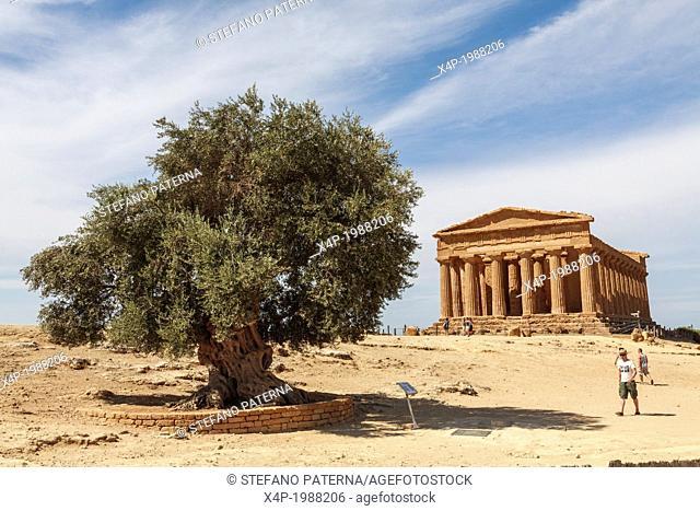 Tempio della Concordia, Concord Temple, Valle dei Templi, Agrigento, Sicily, Italy