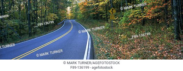 Road. Pocahontas county. West Virginia. USA