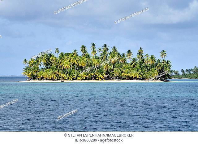 Tropical island with palm trees, Cayos Los Grullos, Mamartupo, San Blas Islands, Panama