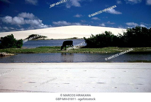 Jericoacoara, Ceará, Brazil