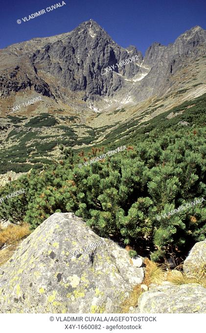 View of the Lomnicky stit from Skalnate pleso in High Tatras, Slovakia