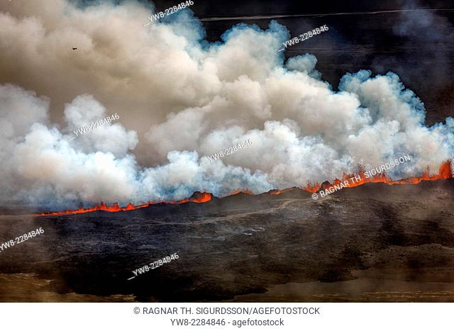 Lava and plumes from the Holuhraun Fissure by the Bardarbunga Volcano, Iceland
