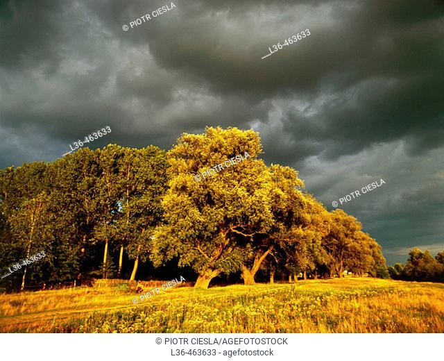 Podlasie region. Mielnik villiage. Eastern Poland
