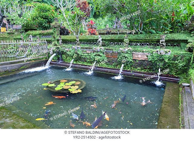 The holy springs at Pura Gunung Kawi Sebatu temple, Bali, Indonesia