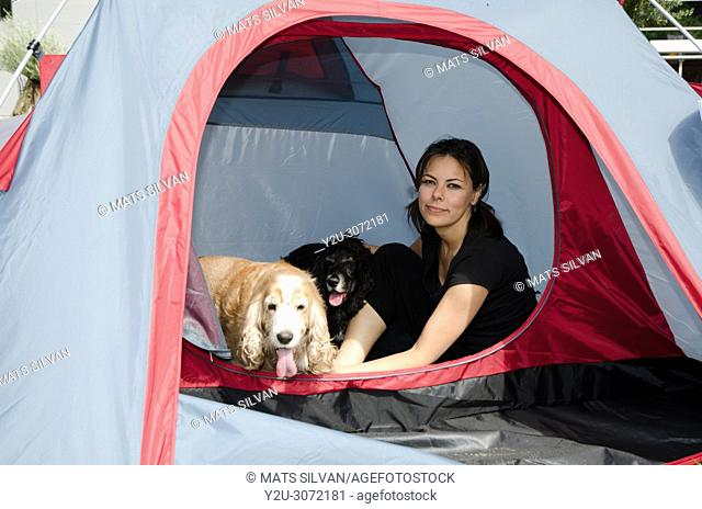 Woman Sitting Inside a Tent with Two Cocker Spaniel Dogs in Locarno, Switzerland