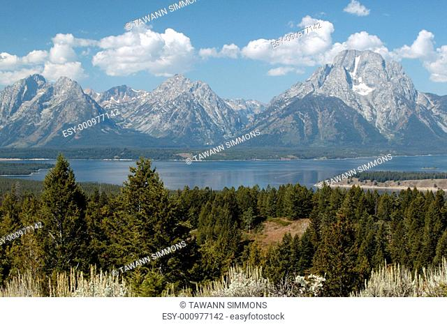 Majesty of Grand Teton