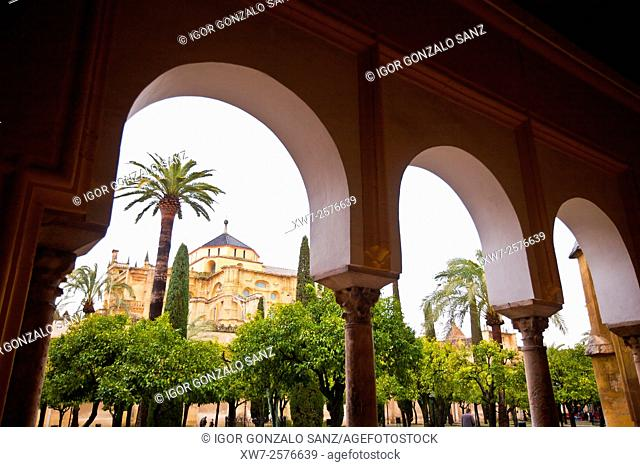 Mosque Cathedral of Cordoba (Andalusia, Spain, Europe)