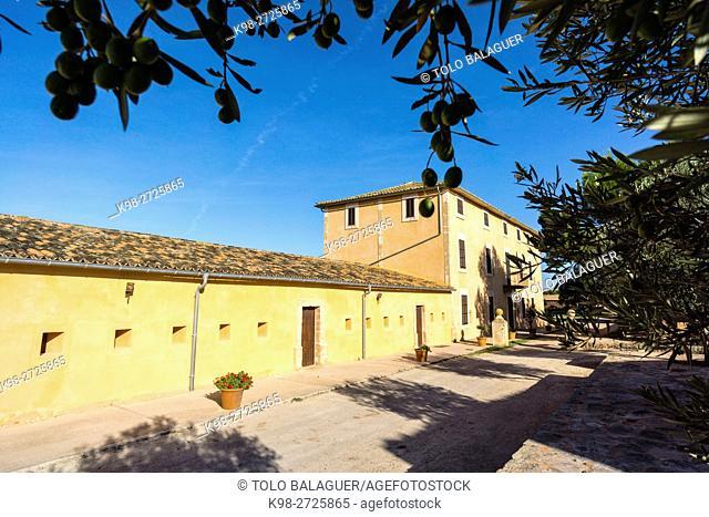 finca publica Son Real, Santa Margarida,Majorca, Balearic Islands, Spain
