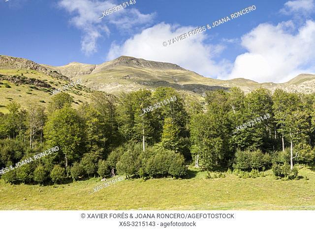 Sierra de Alano y Barranco de la Taxera, Zuriza, Valle de Anso, Huesca, Spain