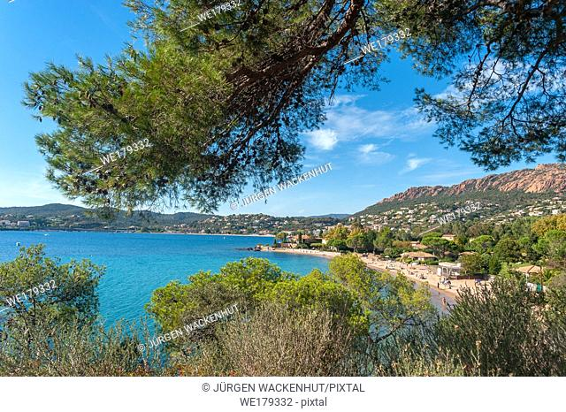 Coastal landscape, Agay, Var, Provence-Alpes-Cote d`Azur, France, Europe