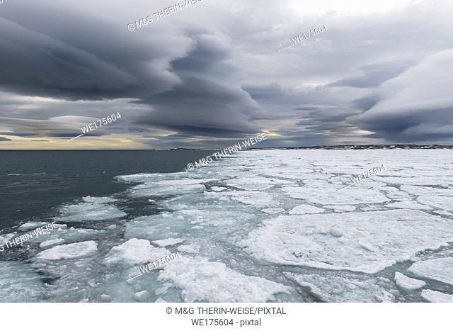 Pack ice, Bjornsundet, Spitsbergen Island, Svalbard archipelago, Norway