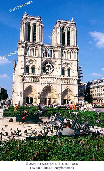 Notre-Dame cathedral. Paris. France