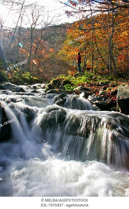The source of the river Oja in La Rioja. Spain
