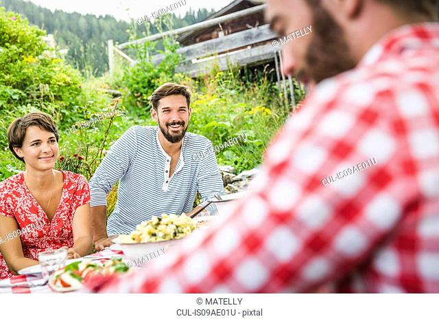 Group of friends having picnic lunch, Tyrol, Austria
