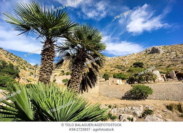 Sa Trapa, Andratx, sierra de Tramuntana, Majorca, Balearic Islands, Spain