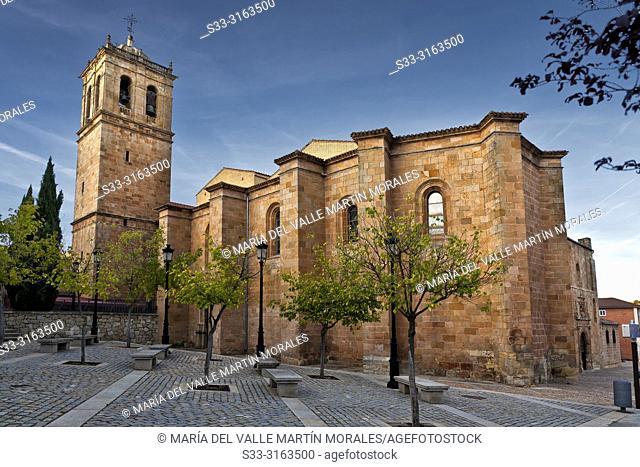 St. Peter procathedral in Soria. Avila. Spain