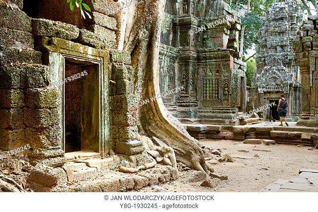 Angkor, Ta Prohm Temple - ruins of the Ta Prohm, Angkor, Cambodia, Asia