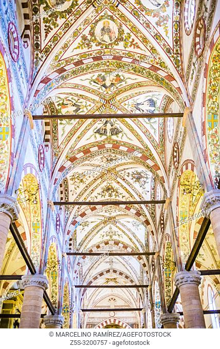 Ceiling of the nave. Sant'Anastasia, the largest church in Verona, begun in 1290, to designs by two Dominican friars Fra Benvenuto da Bologna and Fra Nicolò da...