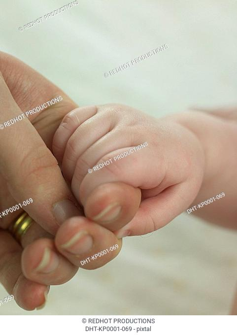 Baby holding unrecognizable person's hand