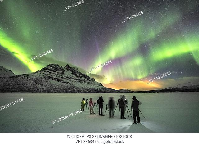 Group of photographers on Skoddebergvatnet lake, with northern lights in the sky. Grovfjord, Troms county, Northern Norway, Norway