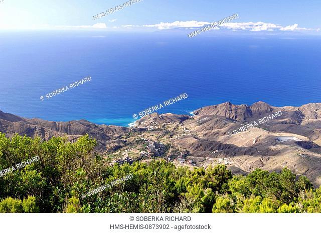Spain, Canary Islands, La Gomera, Valle Gran Rey, El Guro palm grove
