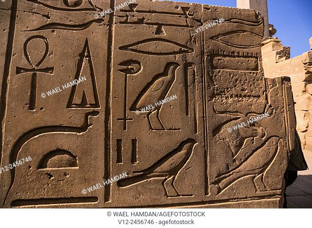 Relief, Temple of amun, Karnak, Luxor ruins, Egypt