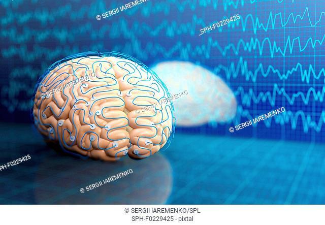 Brain research, conceptual illustration