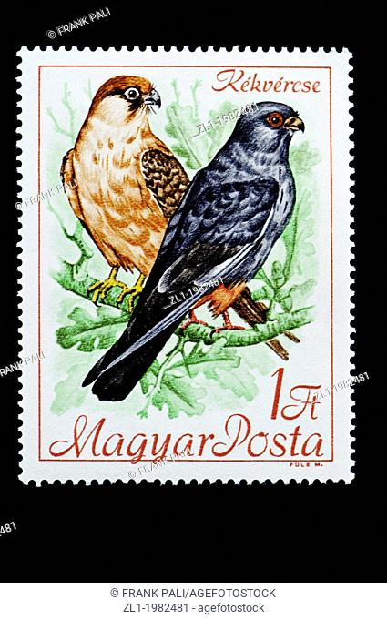 Hungarian bird series postage stamps on a black background