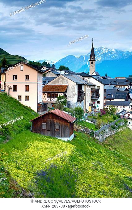 Local Village, Switzerland