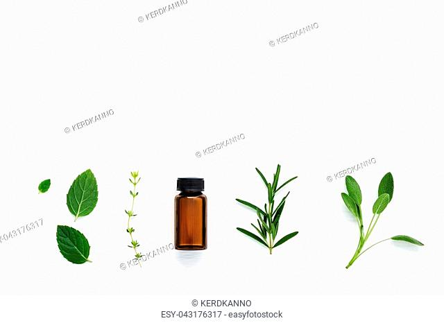 Bottle of essential oil with fresh herbal sage, rosemary, thyme and peppermint setup with flat lay on white wooden table