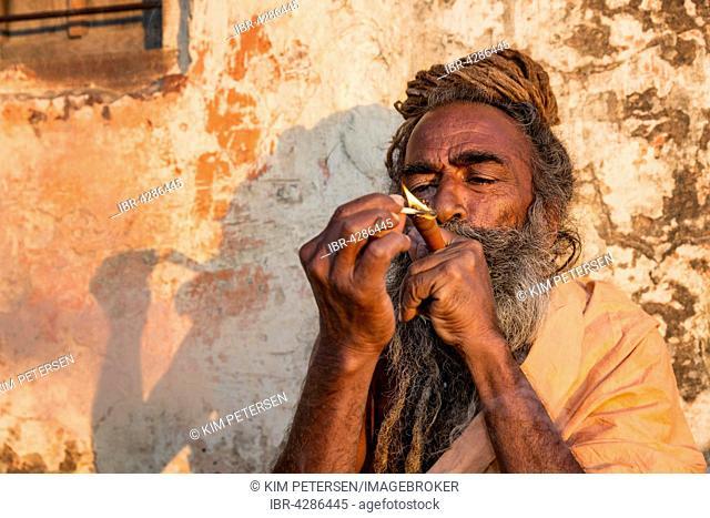 Sadhu, holy man, smoking marihuana, Galtaji, Khania-Balaji, Jaipur, Rajasthan, India