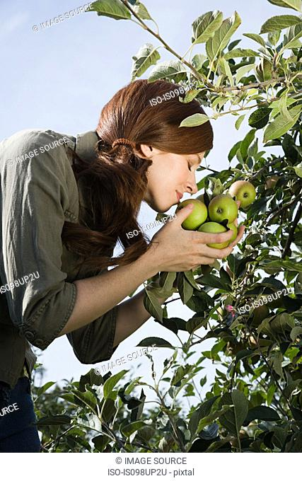 Young woman smelling fresh apples