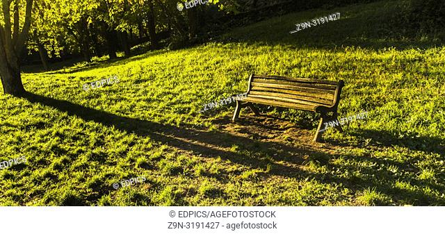 old wooden bench in a park in late afternoon, rome, lazio, italy