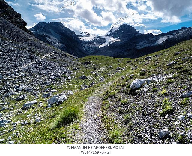 Valle dei Vitelli, the path between the stones, Valtellina, Italy