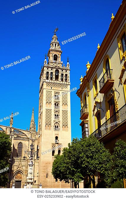 Seville cathedral Giralda tower of Sevilla Andalusia Spain