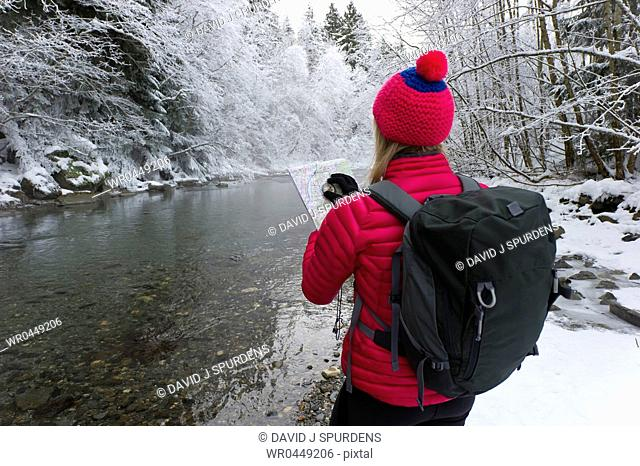 Orienteering woman plots course through snowy forest to home