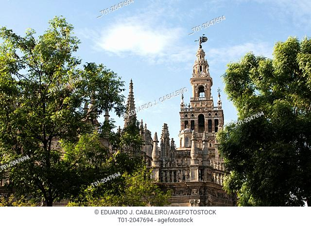 Cathedral and Giralda. Seville