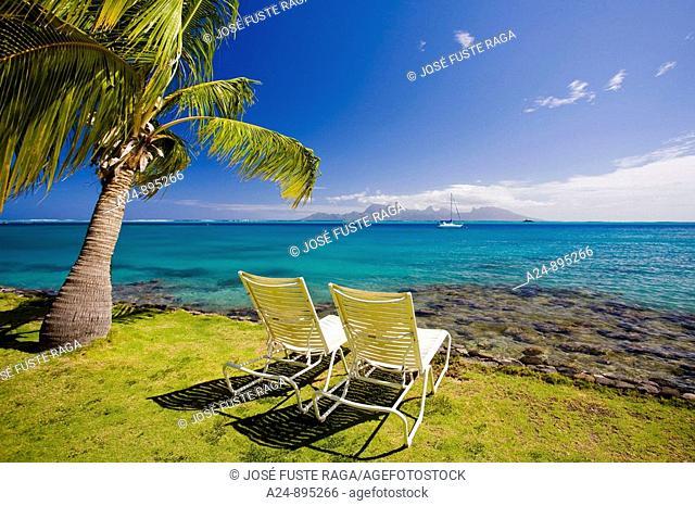 The Coast at the InterContinental resort, Papeete, Tahiti Nui, Tahiti island, Society Islands, French Polynesia (May 2009)
