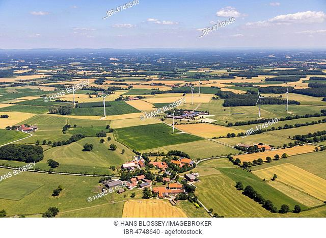 Farms between fields and wind turbines, near Warendorf, Münsterland, North Rhine-Westphalia, Germany
