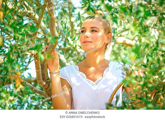 Portrait of a beautiful gentle girl in olive garden, picking autumn harvest, cultivation of fruits, healthy life in a countryside