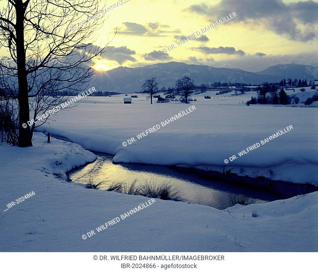 Winter landscape near Ohlstadt, Murnau Moor, Upper Bavaria, Bavaria, Germany, Europe