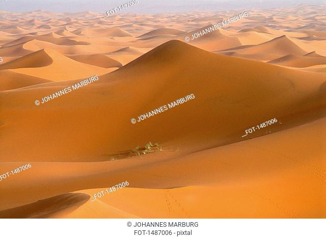 Scenic view of Erg Chebbi dunes, Morocco