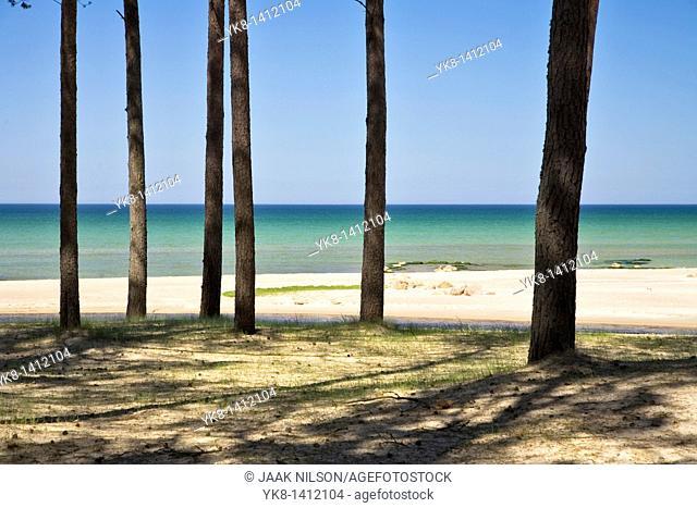 Vääna-Jõesuu Beach, Harju County, Estonia, Europe