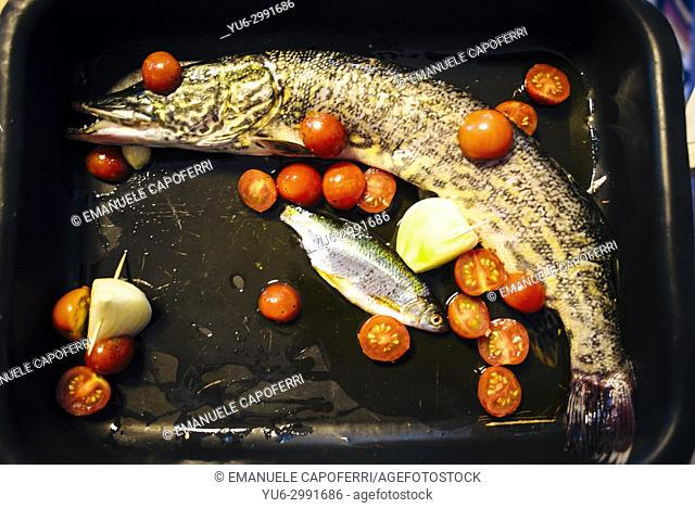 pike in the pan