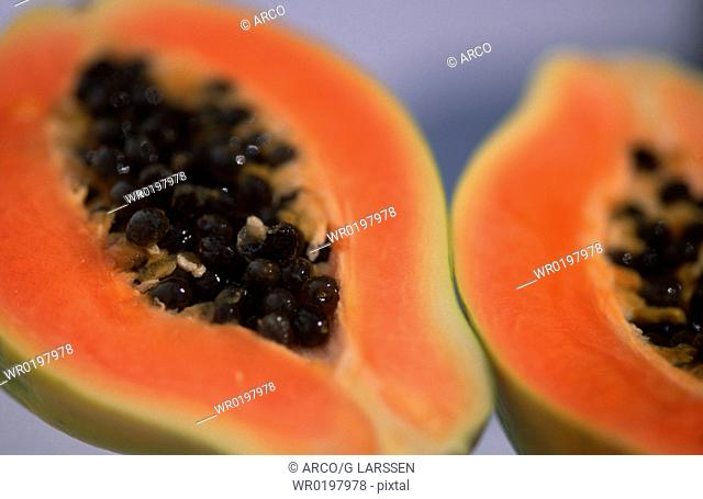 Papaya,Carica, papaya
