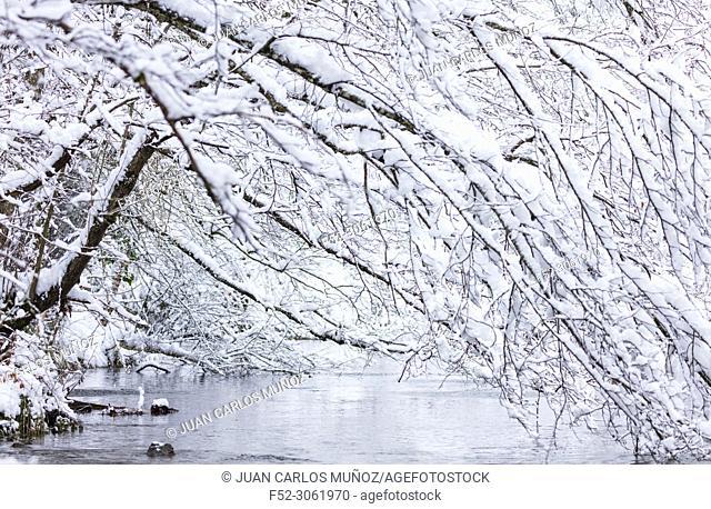 Bayas or Baias River, Gorbeia Natural Park, Alava, Basque Country, Spain, Europe