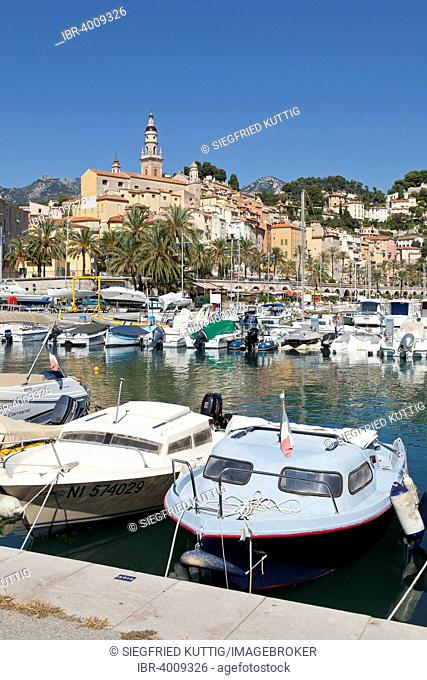 Old town and marina, Menton, Cote d'Azur, France