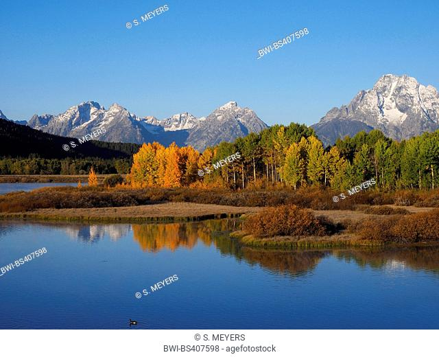 autumn mood at the Oxbow Bend with Mt. Moran in the background, USA, Wyoming, Grand Teton National Park