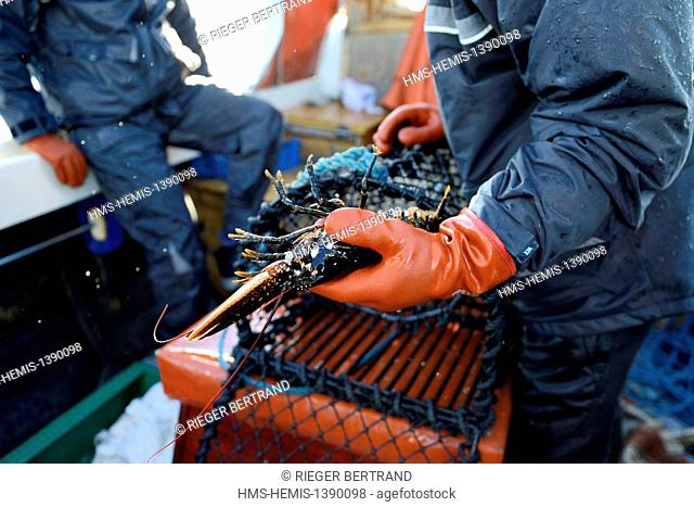 Sweden, Vastra Gotaland, Koster Islands, out to sea to retrieve lobster traps