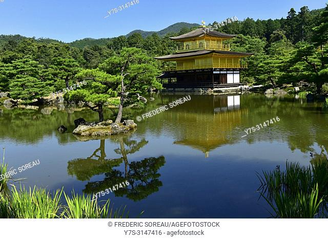 Golden Pavilion at Kinkakuji temple, Kyoto, Japan, Asia
